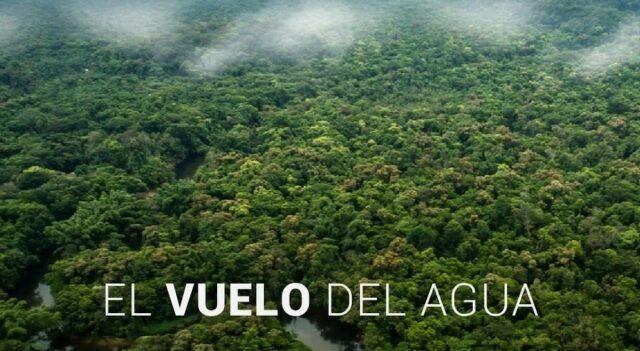 Encuentros FICAMAZONÍA 2020 - El vuelo del agua - Fórmula Entretenimiento